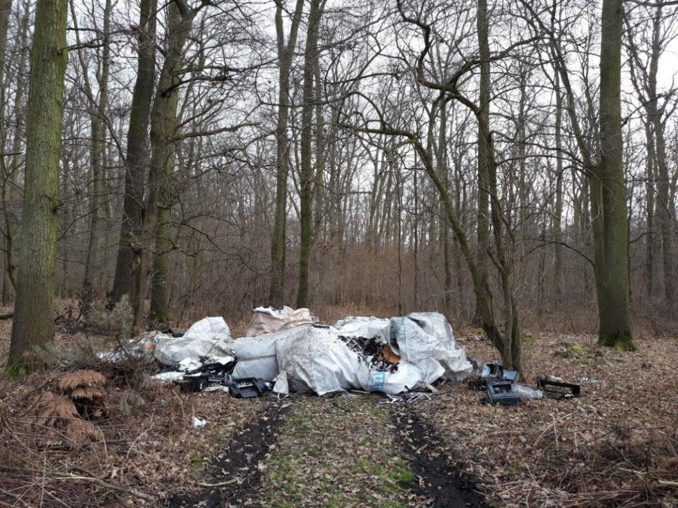 Policja bada sprawę dzikiego wysypiska wsiechnickim lesie