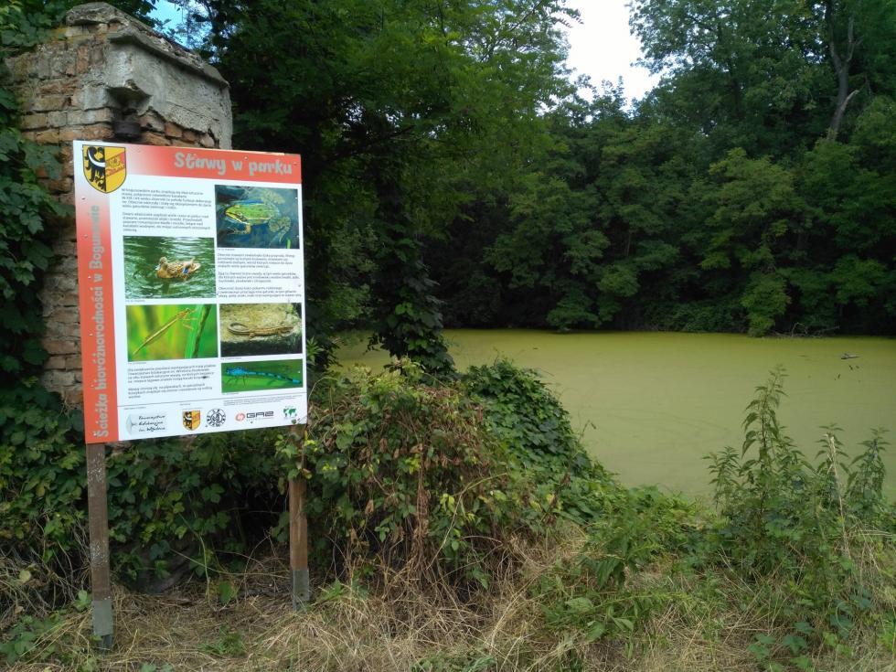 Wiejski park różnorodności biologicznej wBogunowie