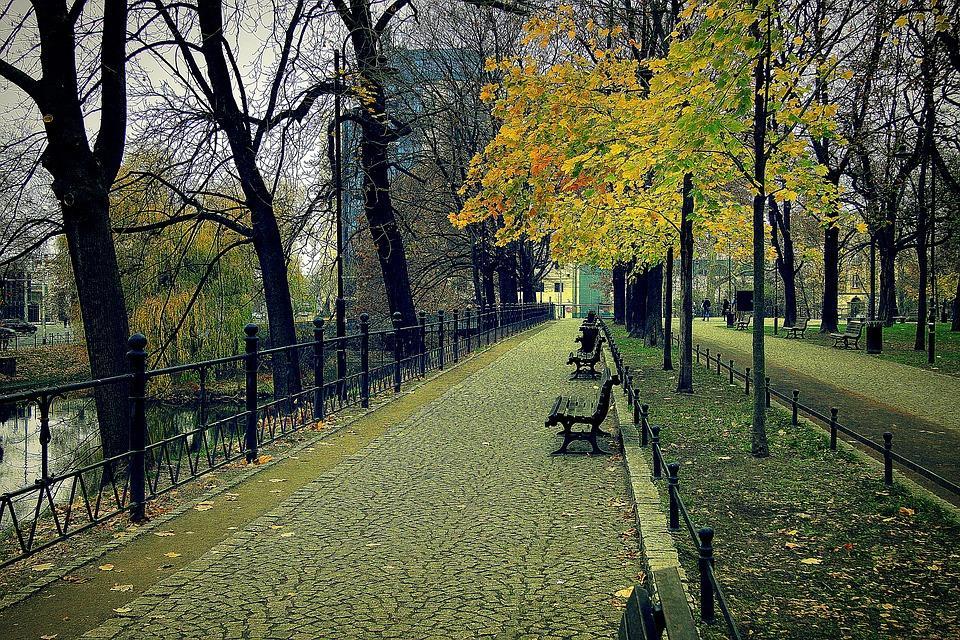 Planujesz zakup mieszkania weWrocławiu? Sprawdź te dzielnice!