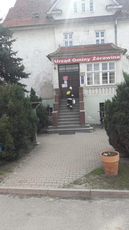 Strażacy OSP Żórawina walczą zwirusem