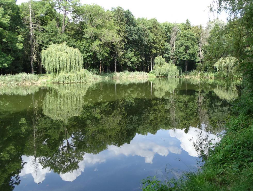 Pamiętajmy oogrodach… – najciekawsze (i najpiękniejsze) parki powiatu wrocławskiego (cz. II)